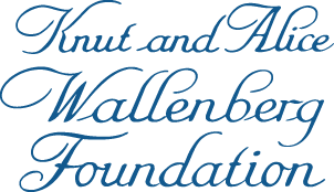 Image result for Knut och Alice Wallenbergs logo